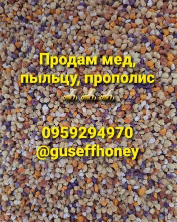 Продам мед соняшниковий і сотовий мед
